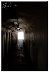 """Tunnel Vision • <a style=""""font-size:0.8em;"""" href=""""https://www.flickr.com/photos/34058517@N02/4510204540/"""" target=""""_blank"""">View on Flickr</a>"""