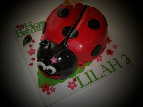 Ladybug Cake by Cake Maniac