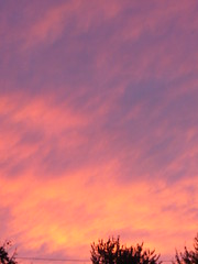 the Pink sky (these photos were taken over the city) (hobit&gollum) Tags: pink sunset sky beautiful clouds pretty vibrant unusual pinkalicious prismaticoutstandingcolorsinourworld