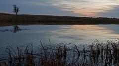 November Sunset (baldwinm16) Tags: autumn sunset fall nature water reflections illinois dusk prairie springbrook springbrookprairie crookedslough illinoisforestpreserve