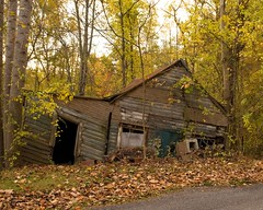 Dorothy dropped a house on my sister (tonyadcockphotos) Tags: autumn fall abandoned leaves virginia nikon fallcolor shed lynchburg 1755mmf28g d200 foilage oldbuilding collapsedhouse lynchburgva holcombrockrd virginiafall virginiaautumn