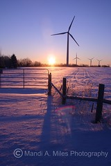 Morning (Miles Away Photography - Mandi Miles) Tags: county morning pink sunset sun snow digital sunrise canon landscape rebel dawn photo am twilight glow purple wind horizon windmills dufferin breathtaking turbines shelburne sunriseturbines