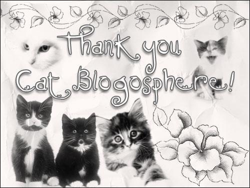 Cat Blogosphere Day