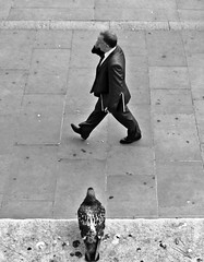 Every step you take (ro_nya) Tags: urban bw walking pigeon candid mobilephone phonetalking ronya