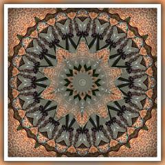 Design 1 (Starfish)  ~(K-FUN#17)~ (Gravityx9) Tags: abstract chop photohsop 0508 smorgasbord kfun 050308 kaleidospheres missbliss1955 kfun17
