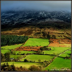 MIST ON THE MOUNTAIN. IRELAND. (Edward Dullard Photography. Kilkenny, Ireland.) Tags: ireland irish mountain landscape irland eire canon350d emeraldisle ierland carlow anawesomeshot diamondclassphotographer flickrdiamond edwarddullard betterthangood kilkennyphotographicsociety