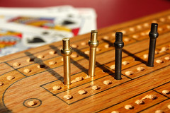 Cribbage Pegs by the photoshoparama