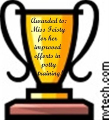 feisty's trophy (Small)