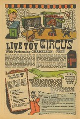 Live Toy Circus (by senses working overtime)