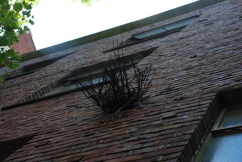 it's a nest