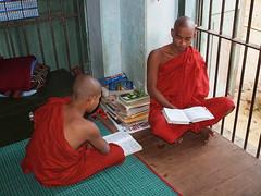 Yangon - Monks in Monastery studying (sharko333) Tags: people man student yangon burma monk monastery myanmar birma rangoon