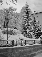 adler 22 (alec.bittner) Tags: blackandwhite bw italy ski mountains monochrome landscape blackwhite scenery olympus blacknwhite slope valgardena slopes bwlandscape bwscenery monochromelandscape
