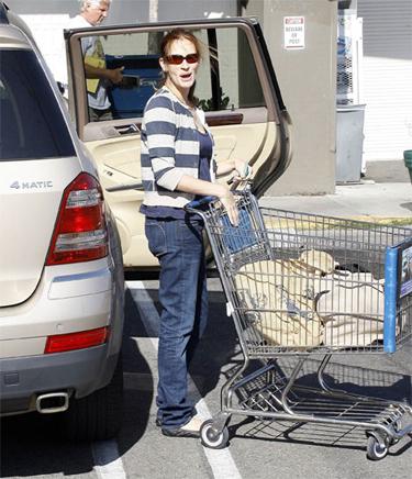 Julia Roberts grocery bags