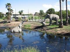 La Brea Tar Pits (yoel_tw) Tags: losangeles labrea tarpits hancockpark mammoths impressedbeauty diamondclassphotographer ממוטות