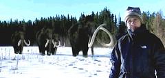posing mammoths