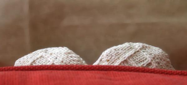 austrian socks 1