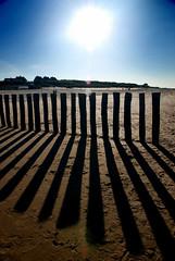 Poles and shadows (Patrese) Tags: holland beach netherlands shadows poles cadzand