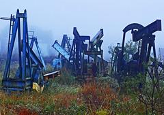 Junket (Texas Finn) Tags: old morning blue horse orange white mist color field grass metal fog yard jack weeds junk texas foggy pump retired thick petroleum