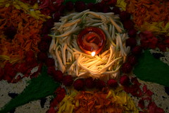 centre of attention (parvation) Tags: flowers lamp lit rangoli diya pookolam
