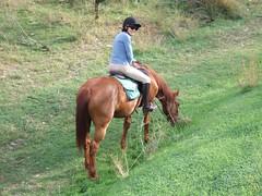DSCF0574 (geeplums) Tags: rancho 2007 ferrer