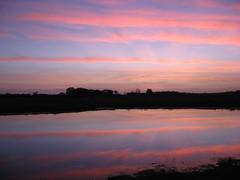 Needs Ore Sunset, Hampshire, England (east med wanderer) Tags: sunset england nationalpark hampshire newforest beaulieuriver needsore