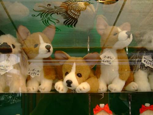 科基犬玩偶