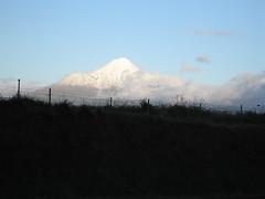 IMG_4064 (kenorrha) Tags: newzealand nznorthisland scenicsnotjustlandscapes