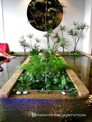 kenko oasis