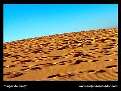 Lugar de paso (Alejandro Amador) Tags: espaa naturaleza beach nature spain flickr desert playa paisaje arena cielo tenerife desierto duna canaryislands islascanarias pasos pisadas alejandroamador