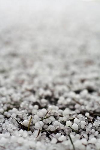 Hail, Hail - in Stayton Oregon