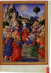 ms Sforza pag 16