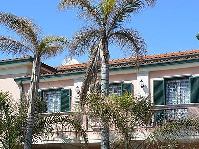 joli maison aux palmiers.jpg