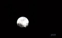 Luna llena (Brujo+) Tags: naturaleza moon nature sonora contraluz luna silueta silouhette aplusphoto ultimateshot goldenphotographer