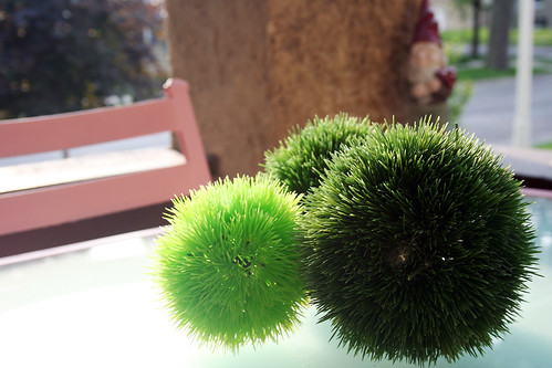 Spiky Green Balls