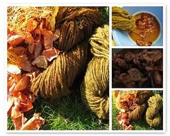 Faerben mit Zwiebelschalen - Dyeing with onions