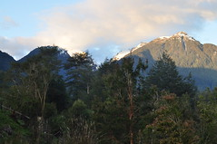 Valle del Rio Puelo - Patagonia Chilena Norte (Noelegroj (5 Million views.Thank you all!!)) Tags: chile travel viaje patagonia naturaleza nature rio forest river landscape lakedistrict paisaje bosques puelo regiondeloslagos riopuelo chileanpatagonia