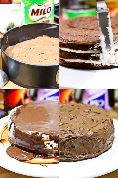 milo_cake-18