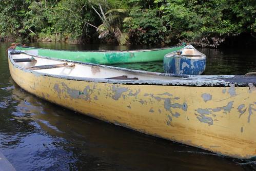 Canoe train