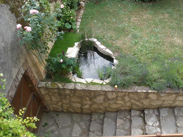 mon p'tit bassin dans mon p'tit jardin - Page 2 5821714111_5a26123d60_z