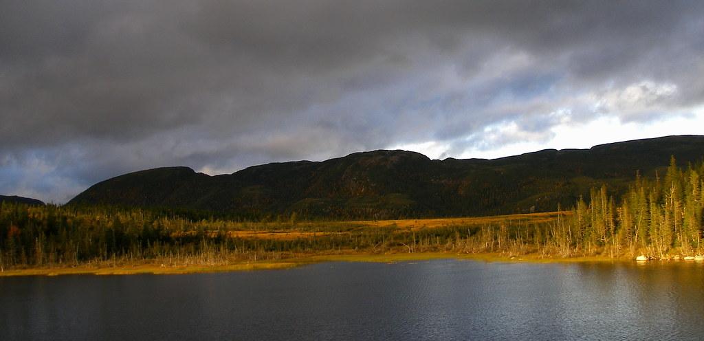 nfld13 bog hills.jpg
