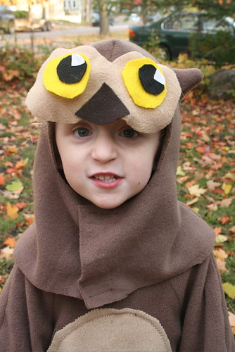Owl hood