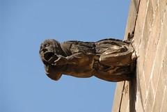 Barcelona - Barri Gtic (picaddict) Tags: barcelona spain gargoyle barri barrigotic gotic