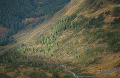 Bear Mountain - Blue Lake Valley (MisterAlpenglow) Tags: deleteme5 deleteme8 deleteme deleteme2 deleteme3 deleteme4 deleteme6 deleteme9 deleteme7 deleteme10 bearmountain valley sitka deleteme11 southeastalaska bearlake baranofisland