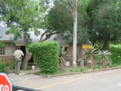 IMG_0200 (michaeldgbailey) Tags: southafrica safari krugernationalpark bigfive