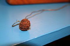 Rudraksha bead