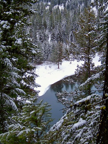 The Clark Fork seen from trail 223.