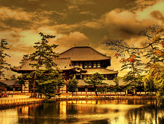Todaiji Temple - Nara (belthelem) Tags: trip travel yellow japan temple olympus estanque nara japon templo todaiji viajar t100 aplusphoto thegardenofzen belthelem obq