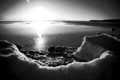 Schwarzlicht (kwiat) Tags: sea bw sunlight ice meer sweden schweden lensflare sverige eis sonnenlicht