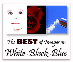 The Best of Images on White-Black-Blue