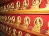 Thousand buddhas